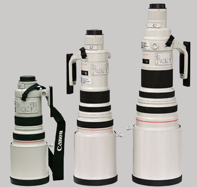 Canon-300Mm-500Mm-600Mm-Lens-Comparison
